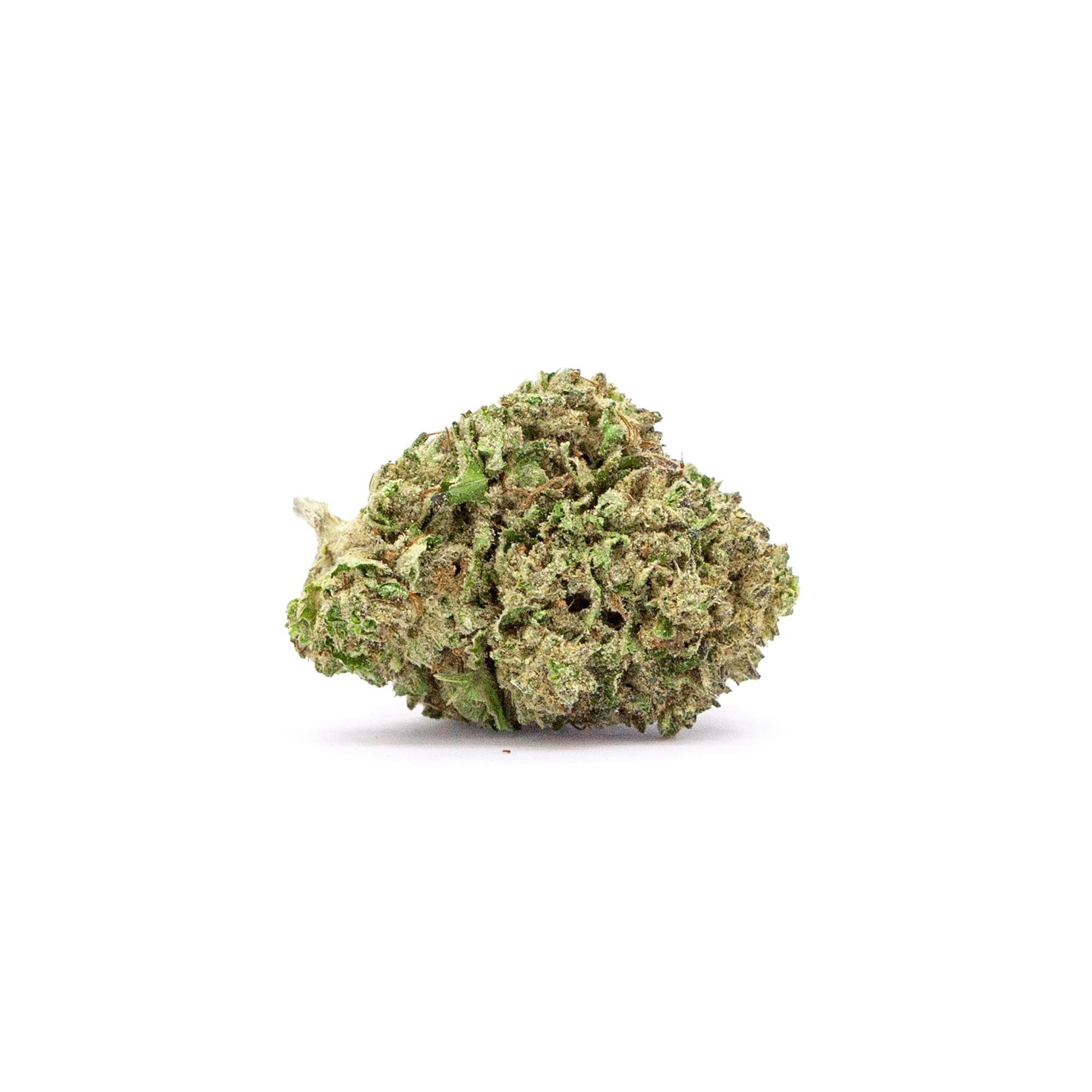 N40_BLUE_CHEESE_BUD_WHITE