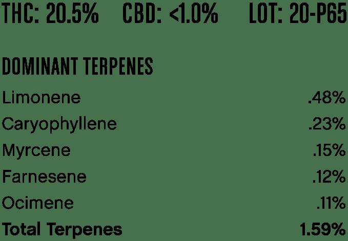 comatosekush-p65-1
