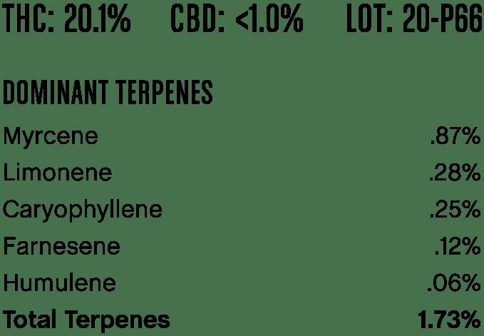 redcongolese-p66-1