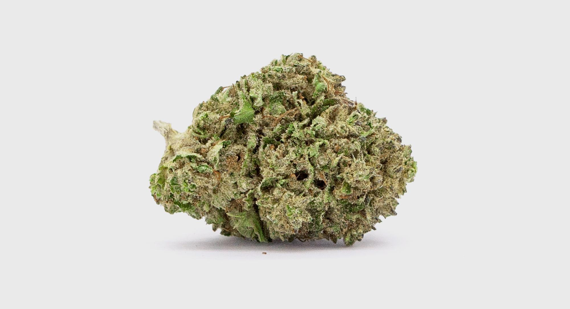 N40_BLUE_CHEESE_BUD_SMALL_2