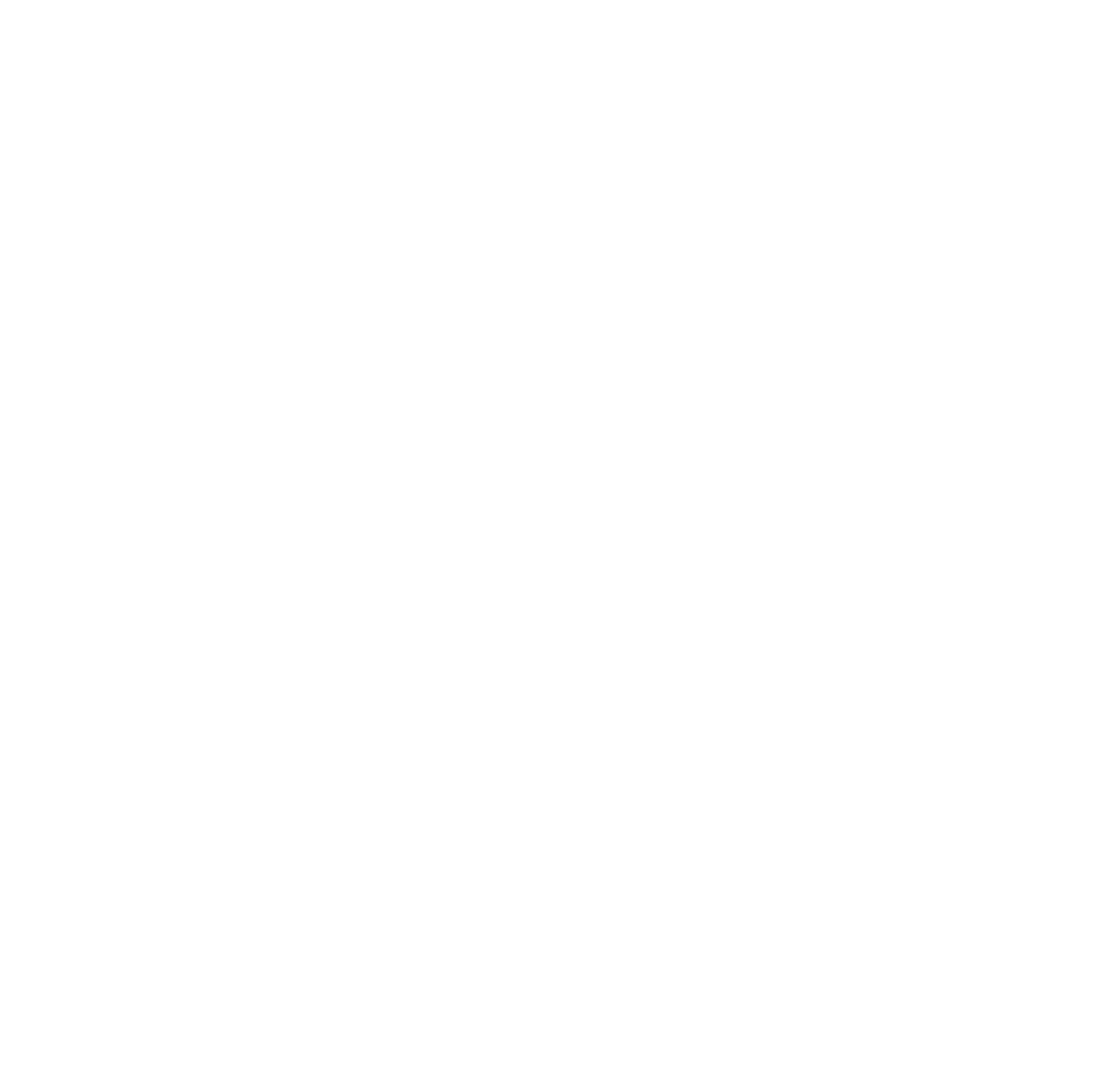 logo-zevk-white